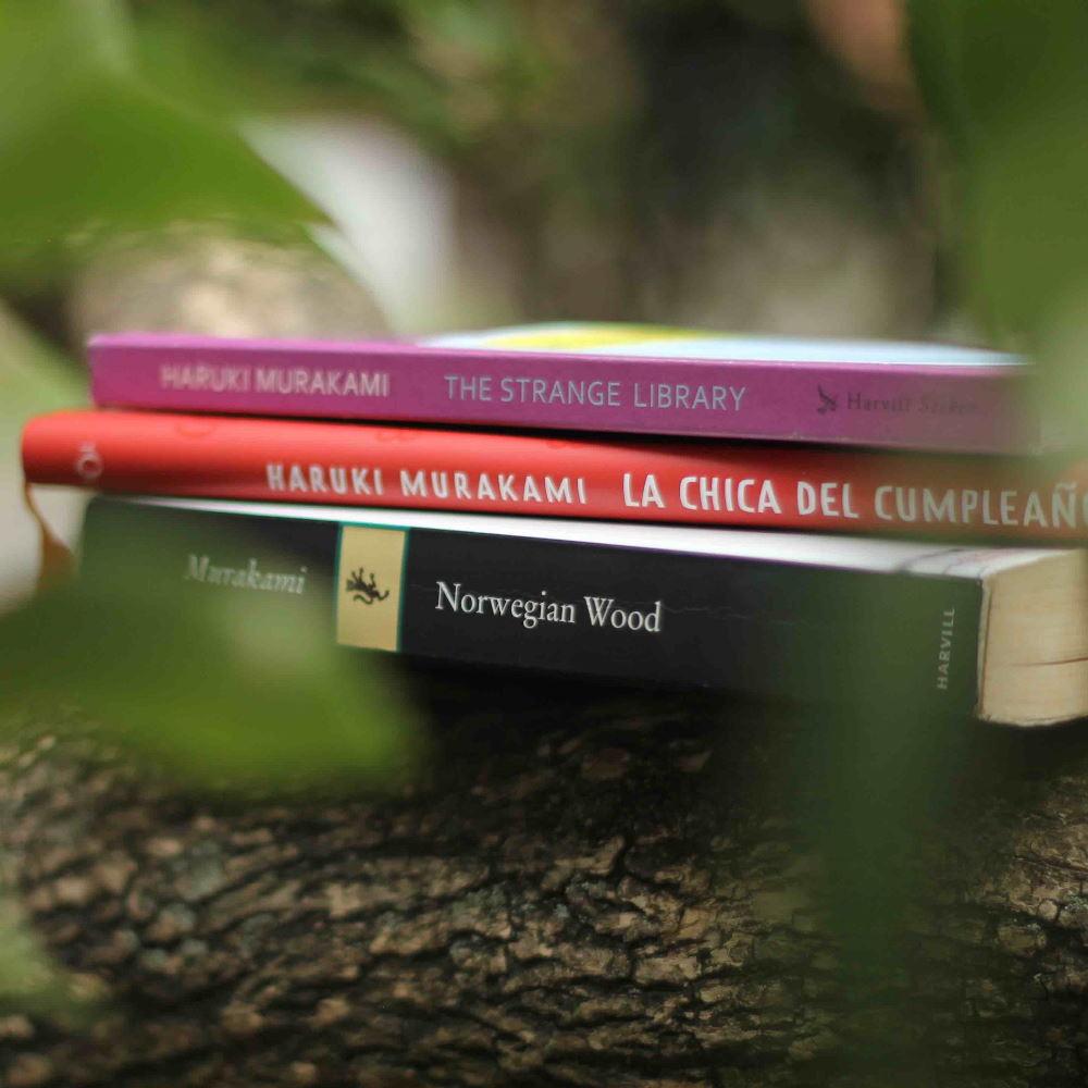 Murakami en 3 Libros - ¿Cuál Es El Plan?